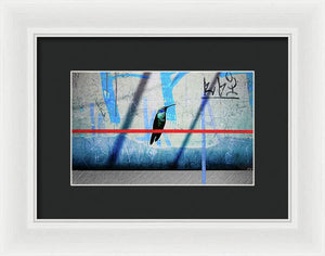 Humming Bird Grafitti - Framed Print - sevenart-studio