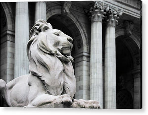 New York Lion - Acrylic Print - SEVENART STUDIO