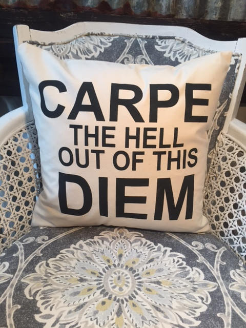 "Carpe the hell out of this Diem pillow 18"" home decor, gift quote pillow"