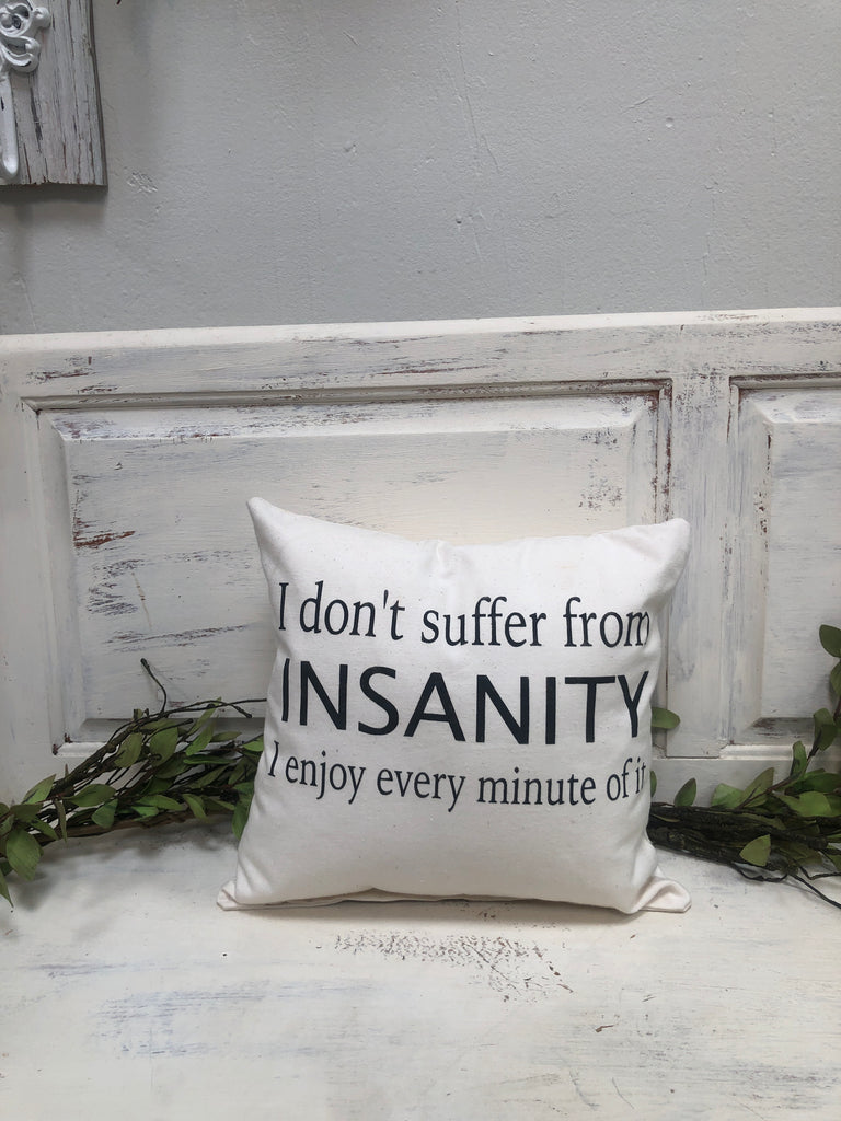 "Insanity 14"" pillow, home decor, gift quote pillow"