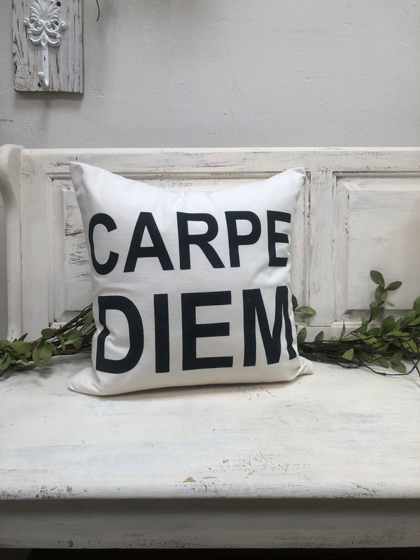 "Carpe Diem 18"" home decor, gift quote pillow"