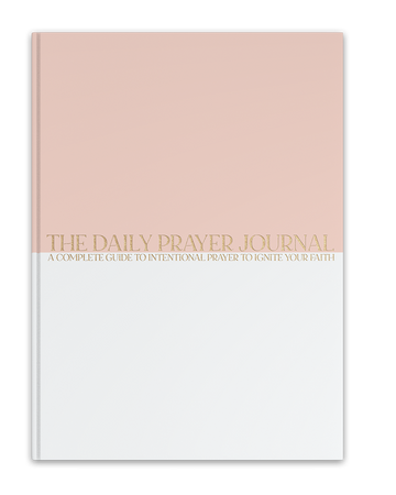 The Daily Prayer Journal (low inventory)