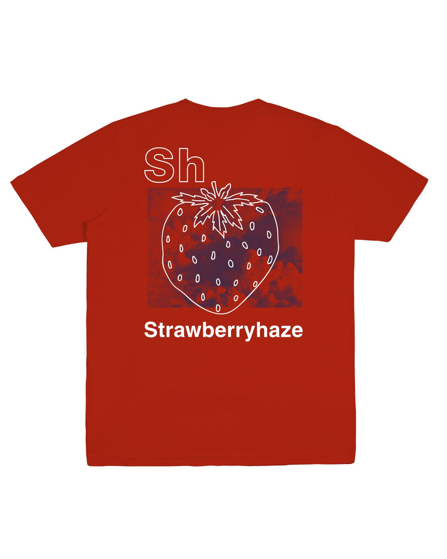 STRAWBERRY HAZE TEE RED F/W 20