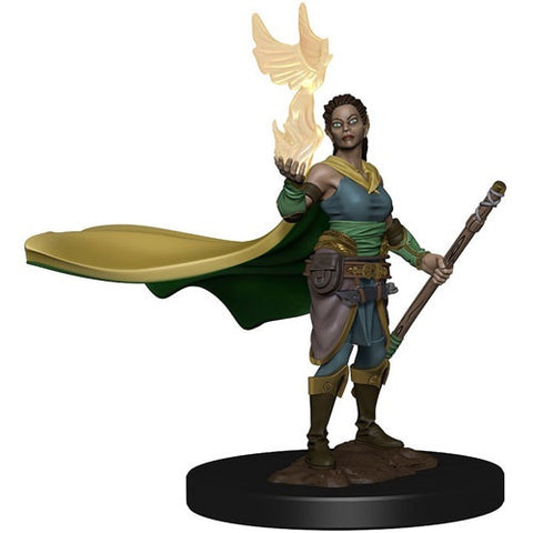 Dungeons and Dragons Icons of the Realms Premium: Female Druid