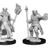 Nolzur's Marvelous Miniatures: Male Human Multiclass Cleric Wizard (90151)