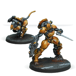 Infinity: Yu Jing Su-Jian Immediate Action Unit