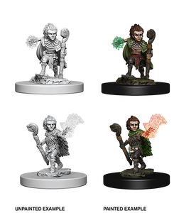 Pathfinder Battles Deep Cuts Miniatures: Gnome Male Druid (73346)