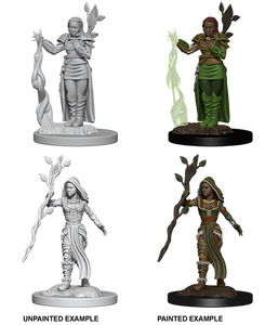 Nolzur's Marvelous Miniatures: Human Female Druid (72640)