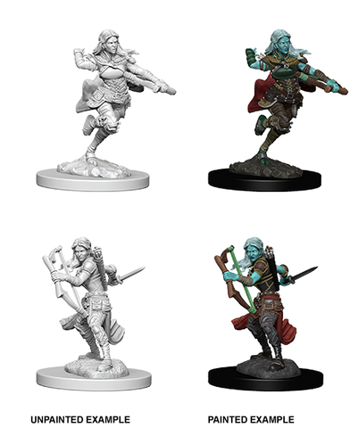 Nolzur's Marvelous Miniatures: Air Genasi Rogue (73204)