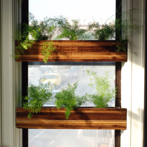 treeHouse Window Planters