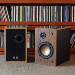 Build Your Own Pair of Speakers