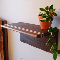 treeHouse Walnut Shelves