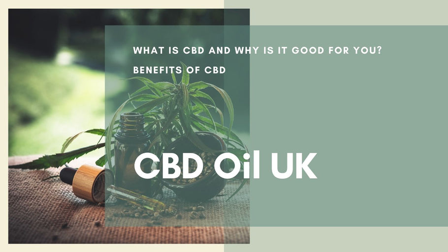 What is CBD? | A Brief Introduction