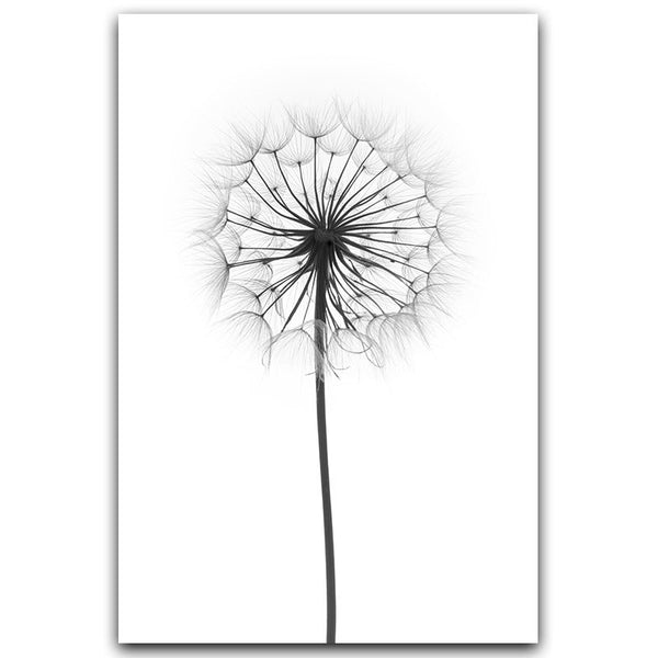 Black and White Dandelion Feathers Wall Art Canvas
