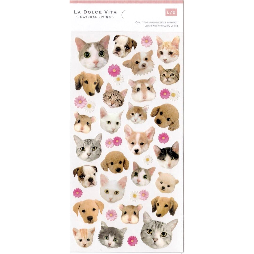 S1157 - Dog & Cat Photo Sticker