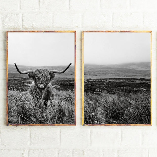 2 Pieces Highland Shaggy Cow