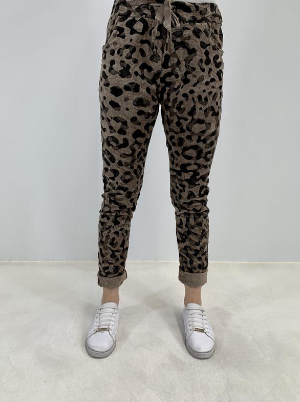 Amici Leopard Printed Super Stretch Corduroy Pull on Pant - Fango
