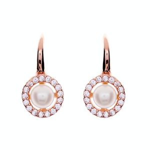 Two toned Cubic Zirconia Earrings - Rose Gold Hook