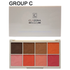 8 color Blush Pallet