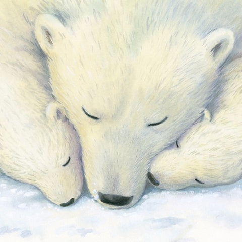 Charity Christmas Cards - Pack of Eight - Polar Bear Snooze - MacMillan Cancer Support