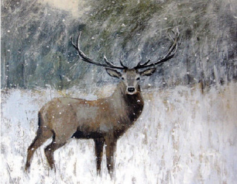 Canns Down Pack of 5 Charity Christmas Cards by Caroline McMillan Davey - Winter Stag