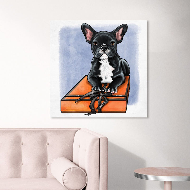 BOX FRENCHIE II Canvas