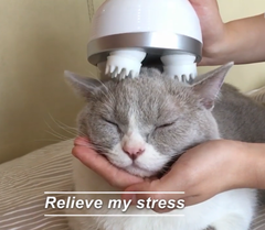 3D Scalp Cat Massager