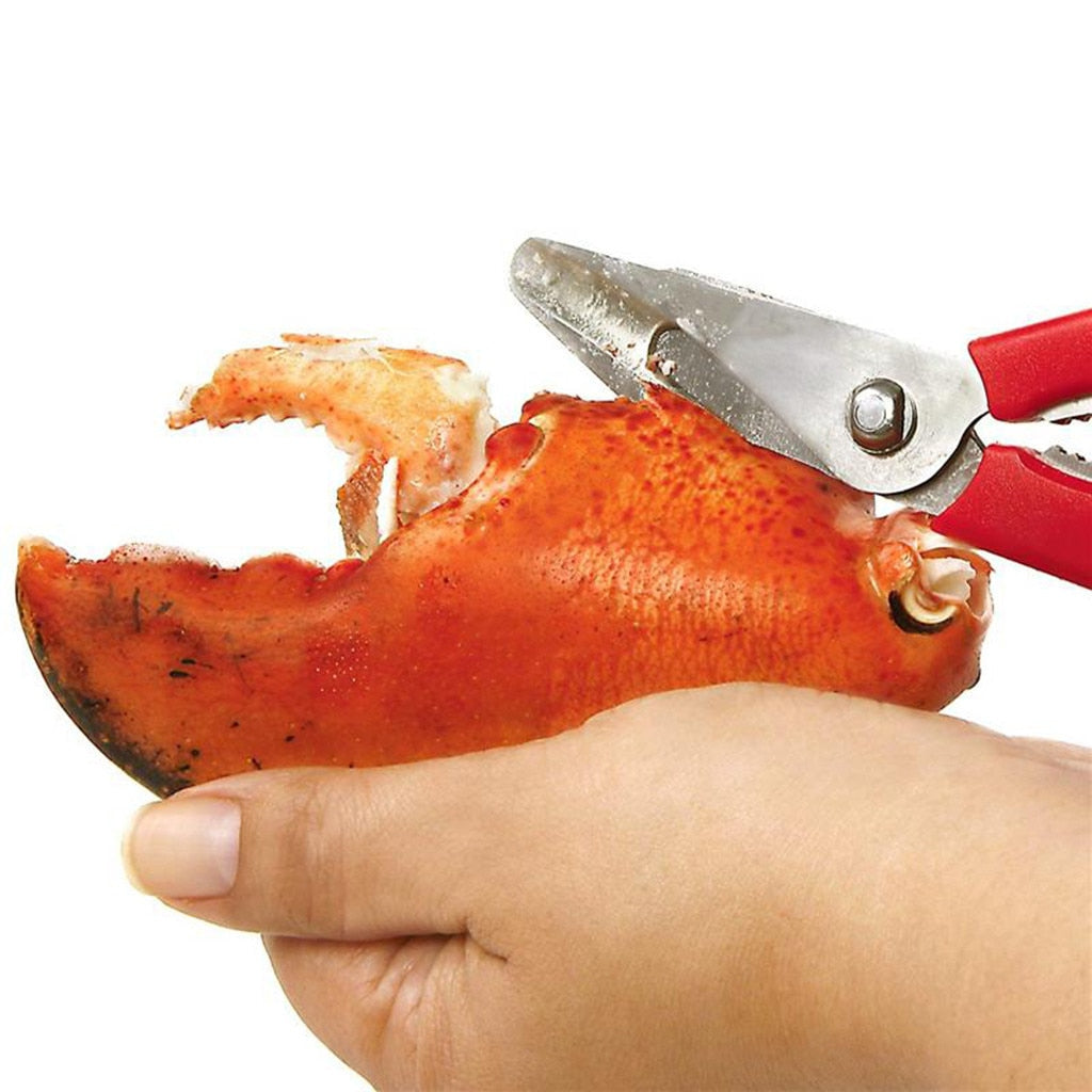Stainless Steel Scissors New Lobster Fish