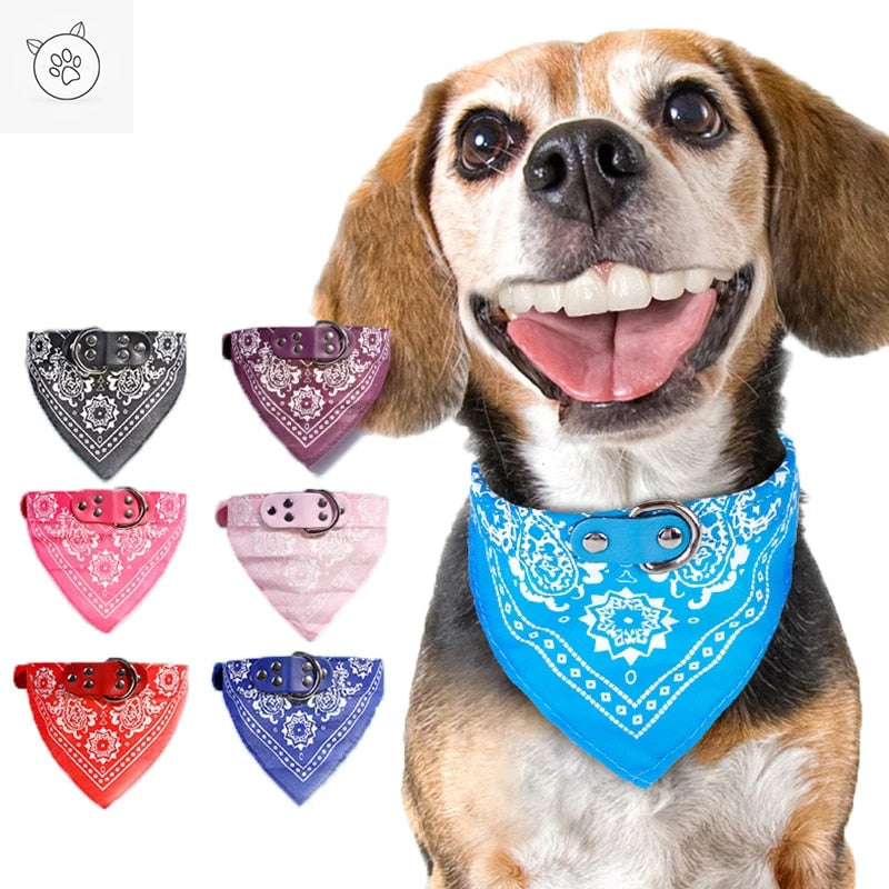 SUPREPET Cute Adjustable Small Dog Collars Puppy Pet Slobber Towel Outdoor