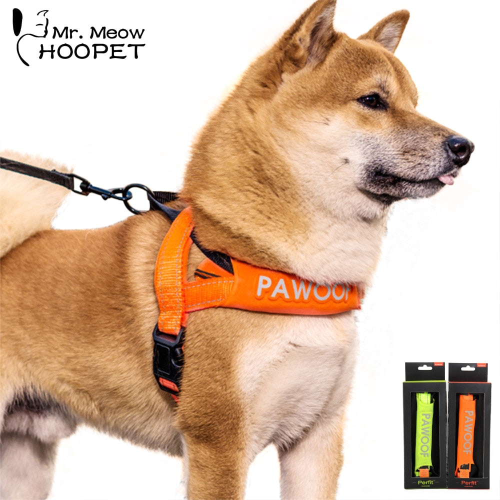 Hoopet Pet Dog Collar