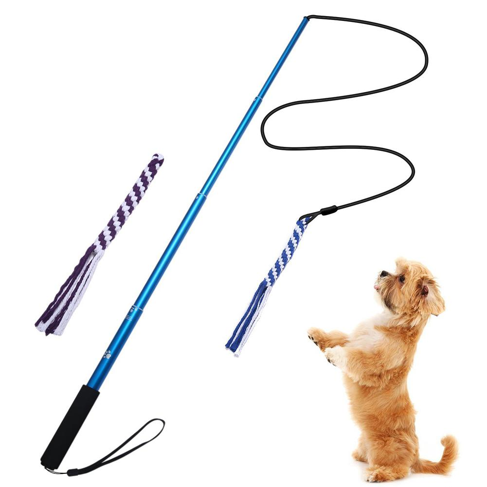 Outdoor Interactive Dog Toys Extendable Flirt Pole Funny Chasing Tail Teaser