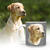 Custom Pet Portrait Mug, Face Coffee Mug