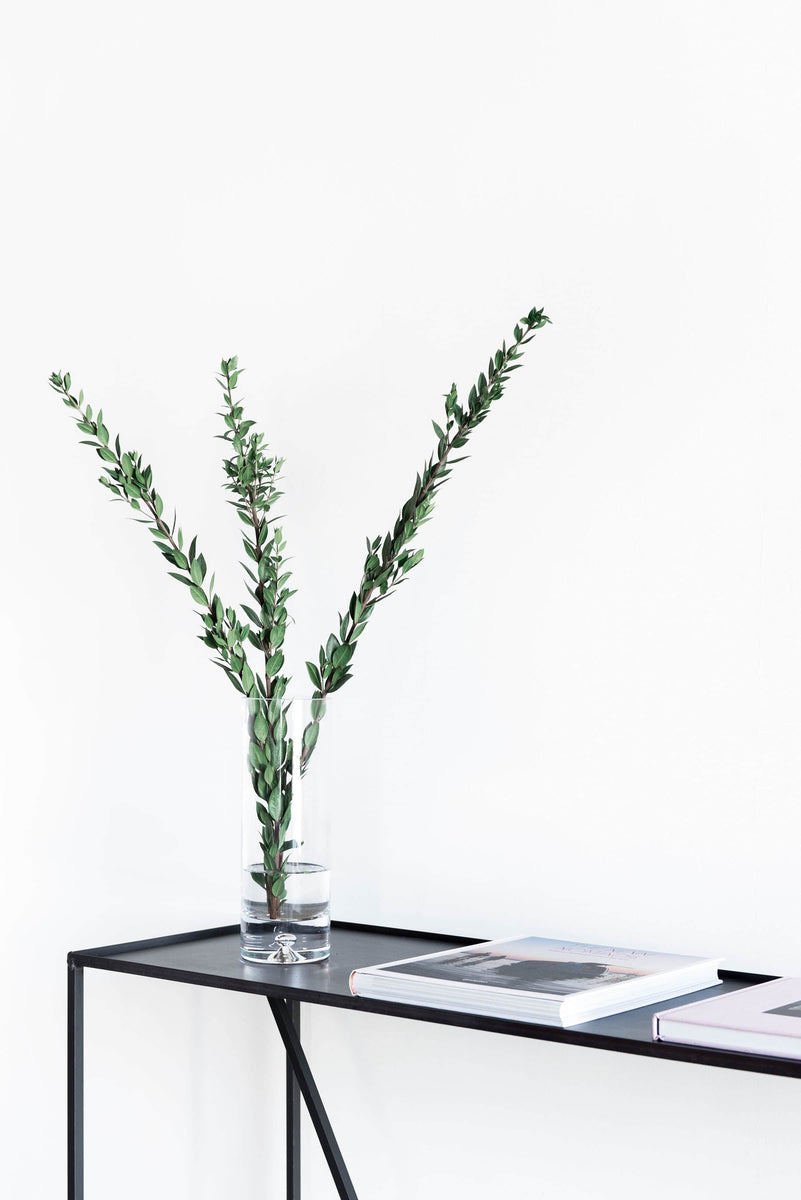 Arden Console steel table