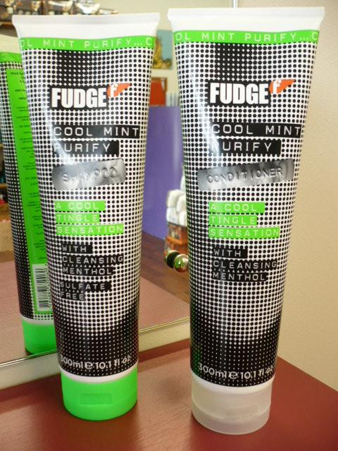 FUDGE COOL MINT PURIFY SHAMPOO 300ML OR SHAMPOO AND CONDITIONER DUO