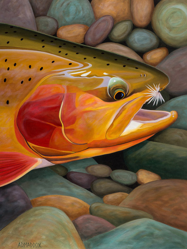 Golden Catch - 40 x 30