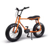 Ruff cycles - Lil' Buddy Electric Bike