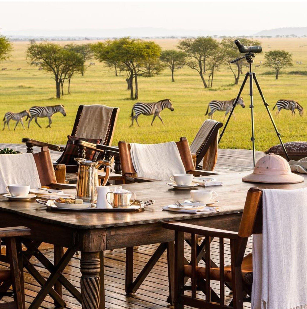 Three African Safari Destinations for Winter '19