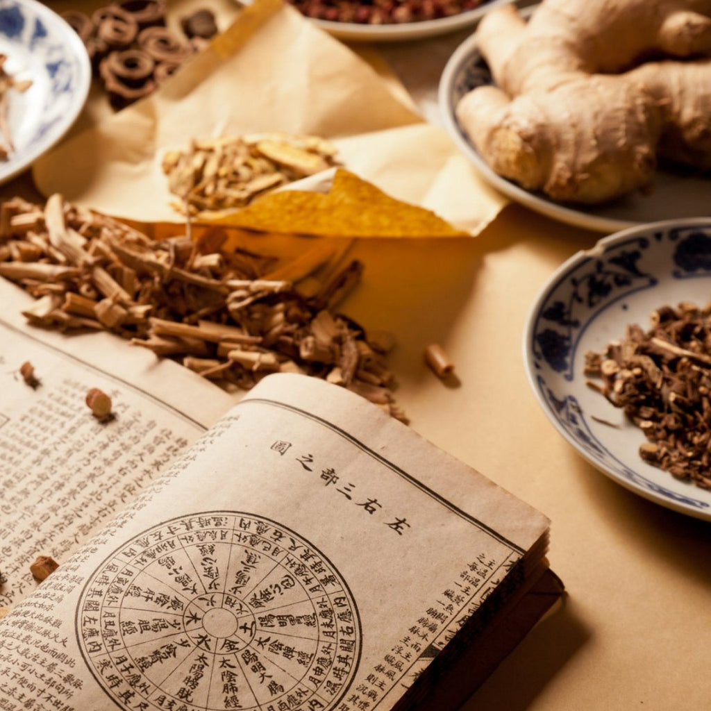 Traditional Chinese Medicine 101