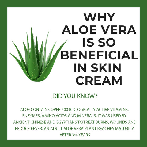 Why Aloe Vera is so important in skin creams