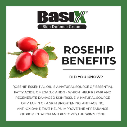Rosehip's many benefits in skin cream