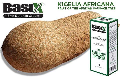 Kigelia Africana is a key ingredient in Basix Skin Defence Cream