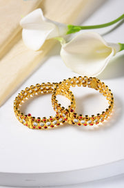 Hinaya Polki Bangles - Set of 2