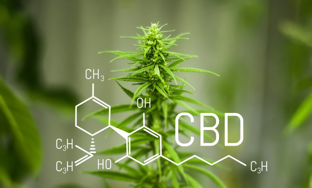What actually is CBD?