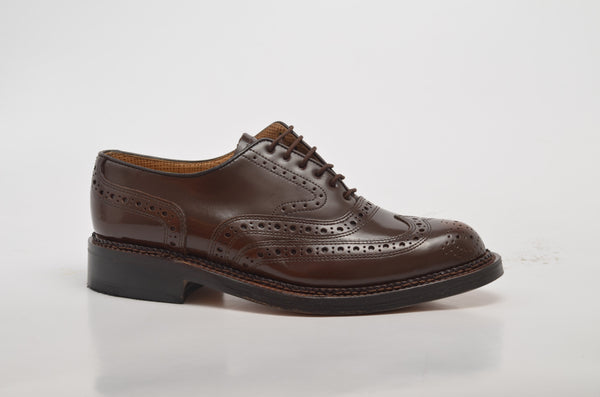Brogue Instatique Cognac