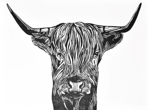 Scottish Highland cattle - Neo Galleri - Et kunstgalleri i Gamle Stavanger