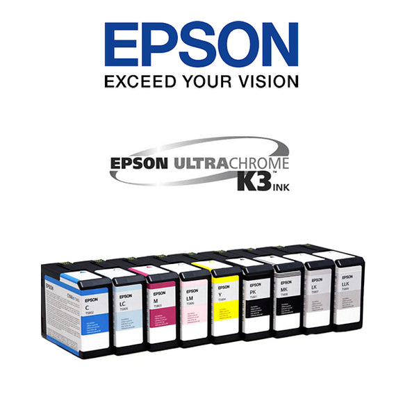 Epson 3800,3880 Ink Cartridges