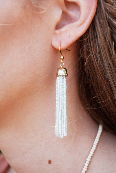 Seed Bead Tassel Earrings (Multiple Colors)