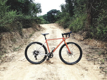 Load image into Gallery viewer, Wildcard Gravel Tourer Matt Moss / Complete Bike