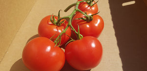 Truss tomatoes - 500g