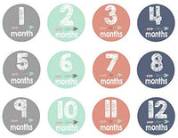 Baby Monthly Milestone Blanket for Girl Boy - Fleece Floral - Photo Props Personalized Photography Backdrop for Newborn Infant Month Growth Pictures, Unisex New Baby Twins Swaddle Shower Gift